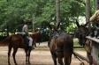 Directing from horseback