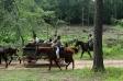 Confederate escort